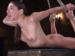 Abella Danger Bound